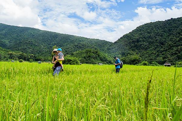 Circuit Laos en Famille