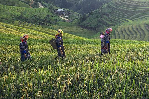 Circuit Les ethnies du Nord Laos