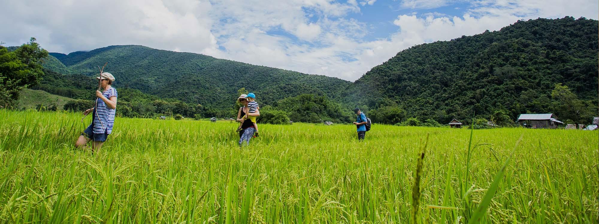 Circuit Visiter le Laos en famille